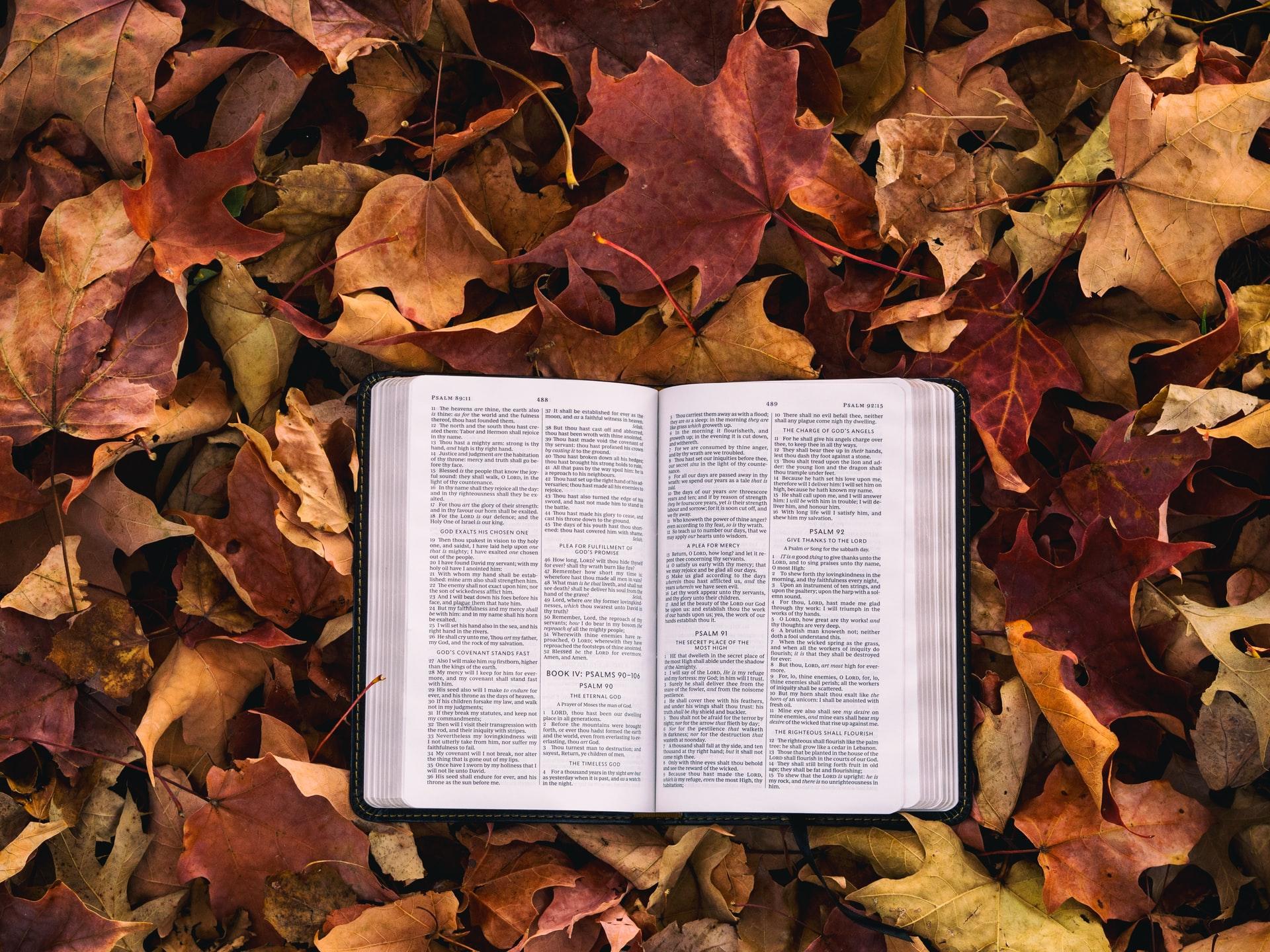 Bible Leaves Fall retreat